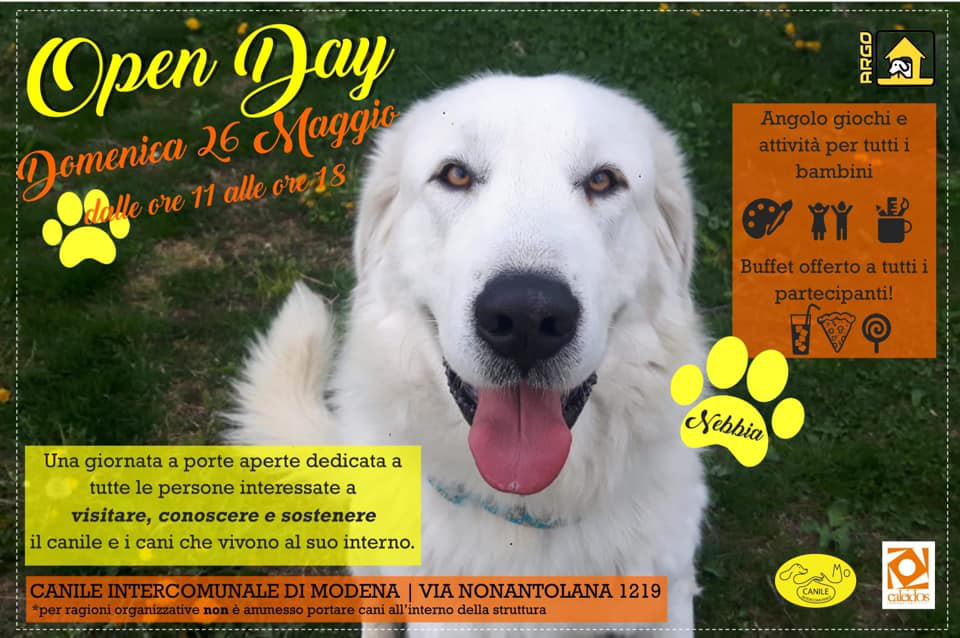 open day 2019 canile di modena