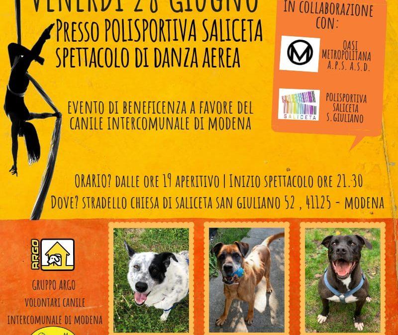 #sostieniilcanile – Evento di beneficenza per il Canile di Modena