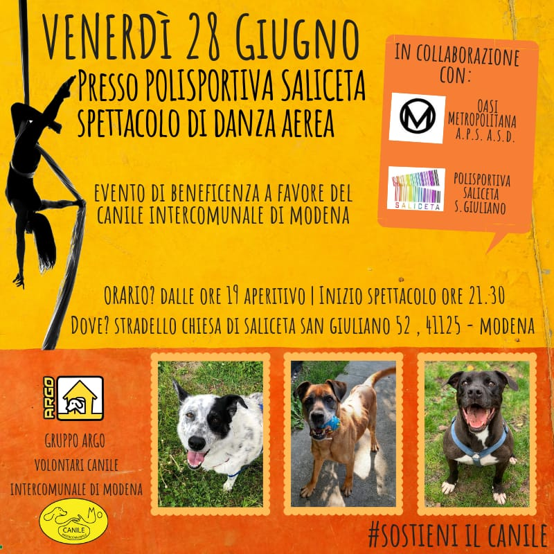 Evento beneficenza Canile Modena