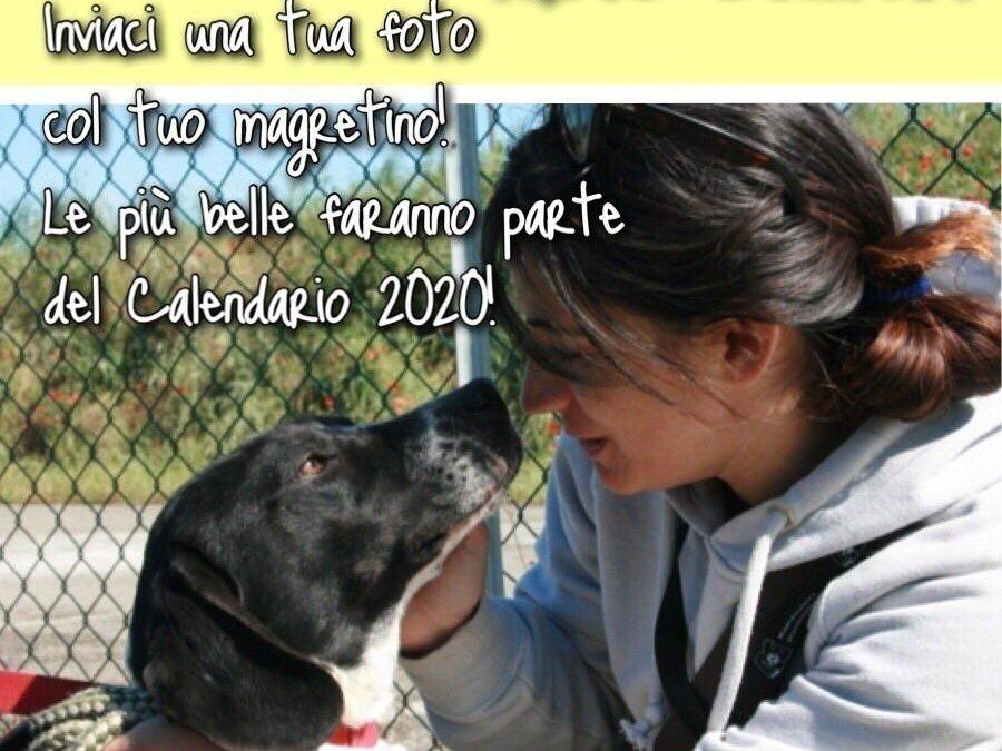 Magretario 2020 Photo Contest