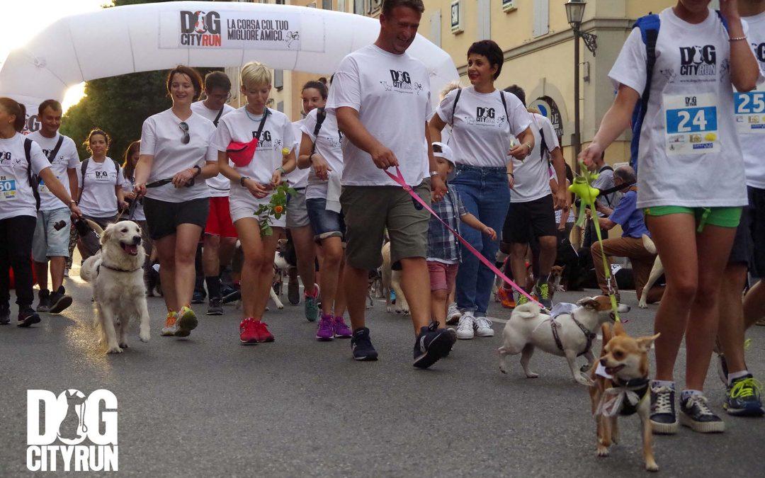 Dog City Run
