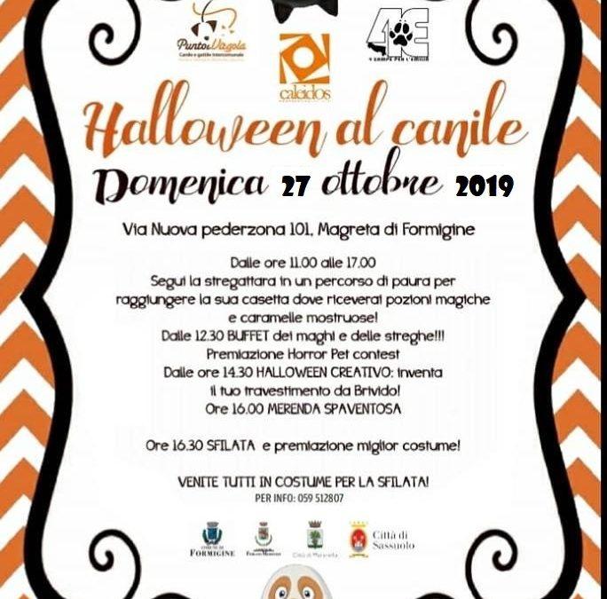 Openday Halloween al Canile di Magreta