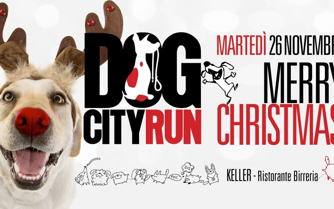 Dog City Run – Merry Christmas
