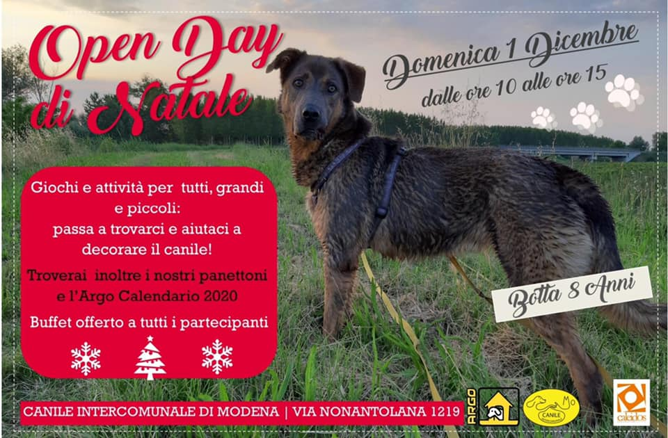 """Open day di Natale"" del Canile Intercomunale di Modena"